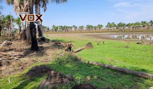 Seca – Nascentes do Rio Paraguai secam e moradores temem falta d'água